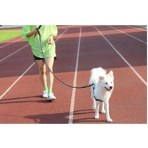 BAAPET Strong Dog Leash