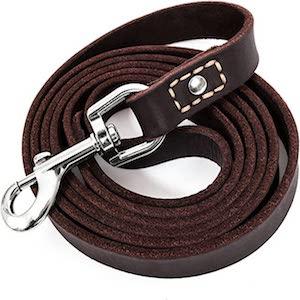 LEATHERBERG Leather Dog Training Leash