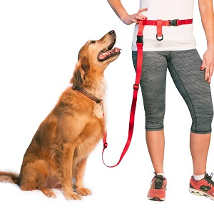 The Buddy System Adjustable Hands Free Dog Leash