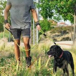 Tuff Mutt Dog Climbing Inspired Rope Leash