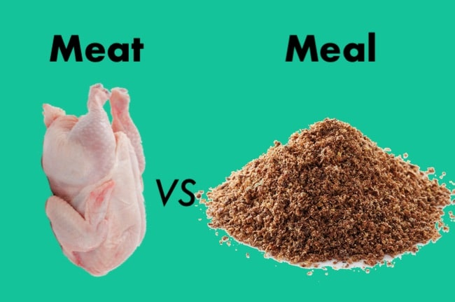What is Chicken Meal