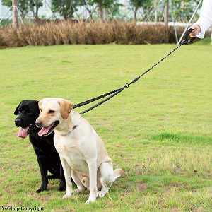 iYoShop Dual Dog Leash