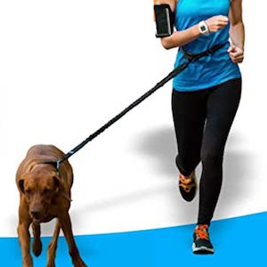 Best Dog Leash for Hiking