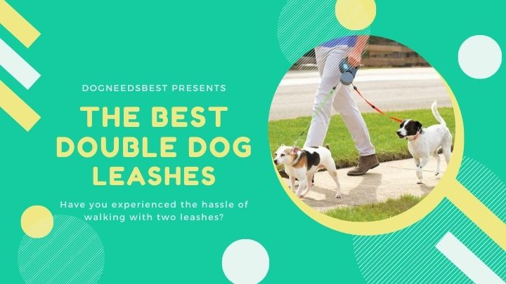 Best Double Dog Leashes & Double Dog Leash Couplers Featured Image