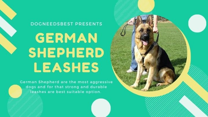 Best German Shepherd Leashes for Puppies Featured Image