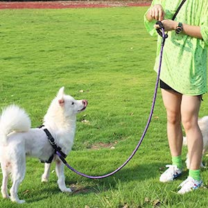 Best Rope Dog Leash