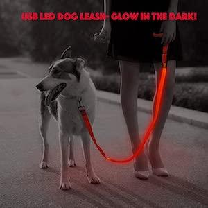 Illumifun Glowing LED Dog Leash