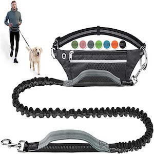 LANNEY Hands Free Dog Leash