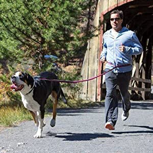 RUFFWEAR – Flat Out Dog Leash