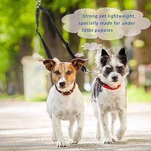 Snagle Paw Double Dog Leash Coupler