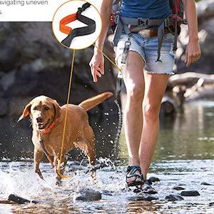 Tuff Mutt Hands Free Dog Leash for Hiking