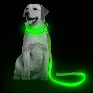 VIZPET LED Dog Leash