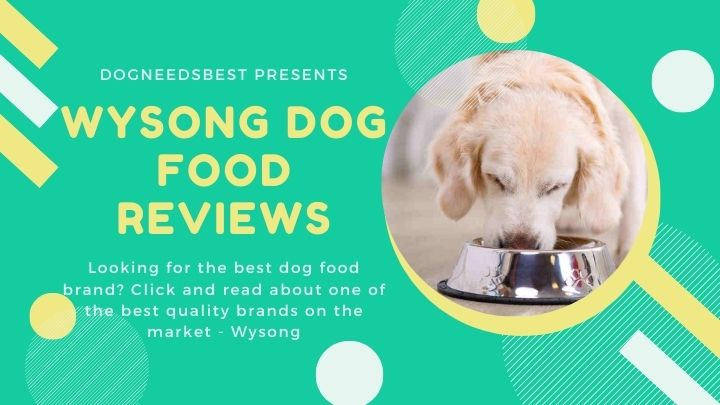 Wysong Dog Food Reviews, Ratings, Recalls, Ingredients Featured Image
