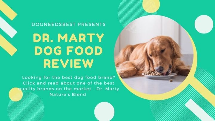 Dr. Marty Nature's Blend Dog Food Review – Is It Worth It Featured Image