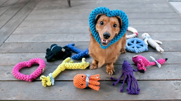 How to Clean your Dog Toys