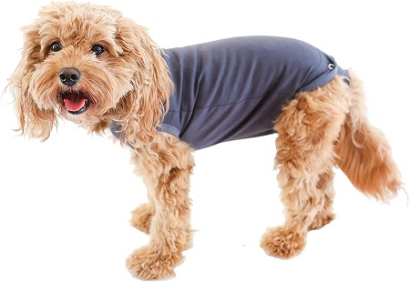 baby onesie dog diaper