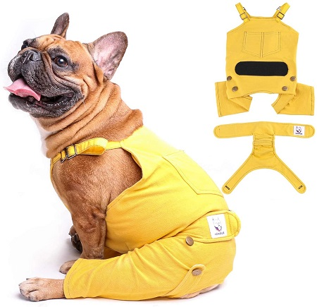 dog diapers using canine suspenders