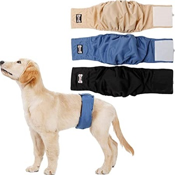 male dog diapers with belly bands