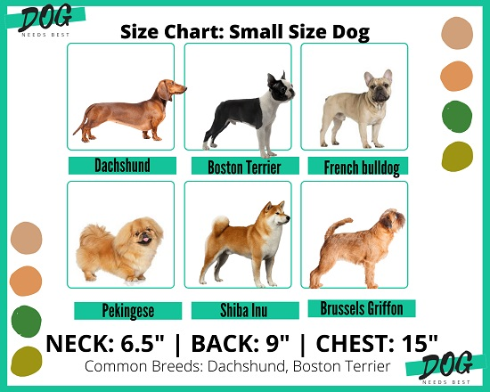 Dog sizing chart for small dogs