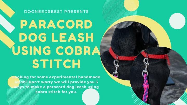 Paracord dog Leash Using Cobra Stitch